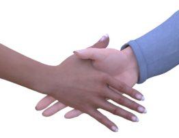 MF Shaking Hands   PhloxADR