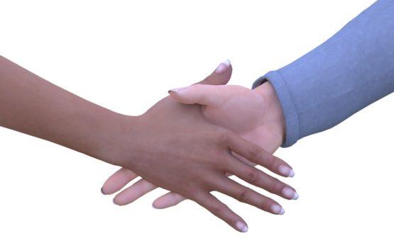MF Shaking Hands | PhloxADR