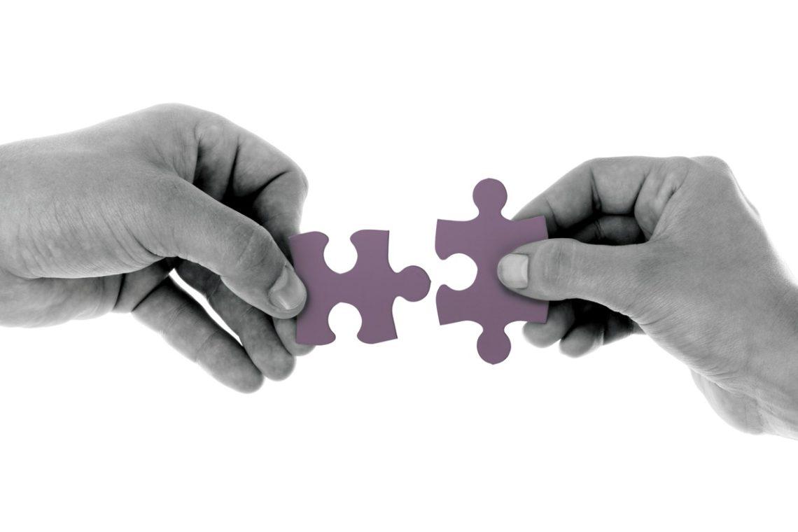 Mediation Puzzle | PhloxADR