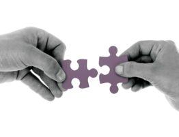 Mediation Puzzle   PhloxADR